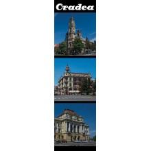 Semn de carte Oradea Combinate