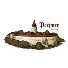 Tricou copii Prejmer