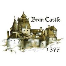 Tricou copii Castelul Bran